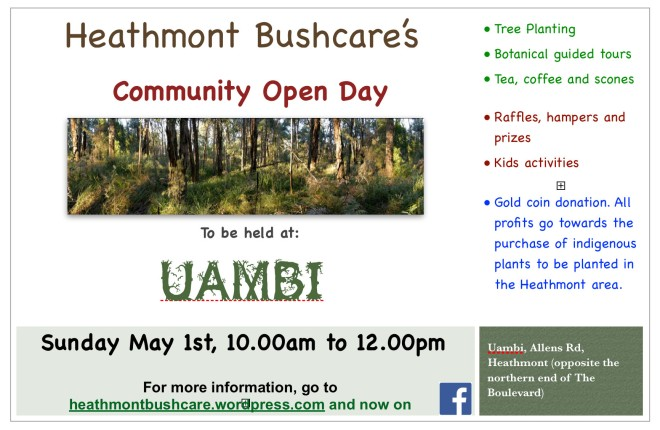 Heathmont Bushcare Open Day 2016